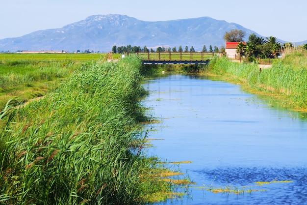 Water kanaal door de rijstvelden Gratis Foto