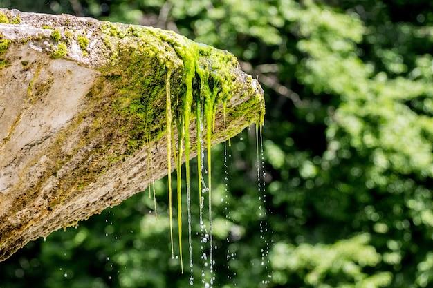 Water stroomt uit een stenen kom van een oude fontein Premium Foto