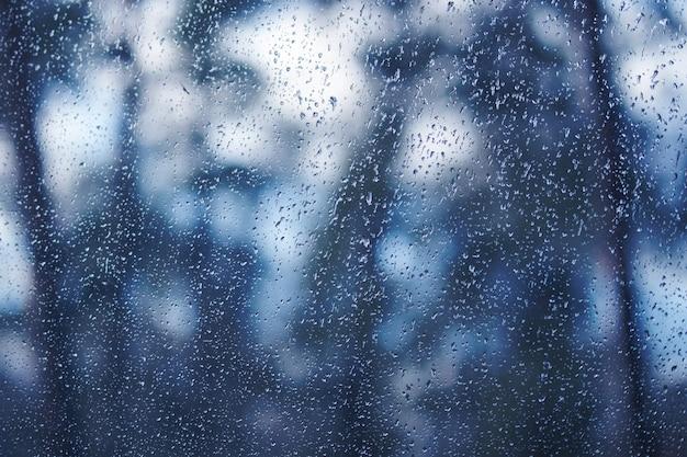 Waterdruppels op het venster. kijk door het raam naar hout, bos, tuin. achtergrond afgezwakt in rtendy kleur 2020 klassiek blauw. Premium Foto