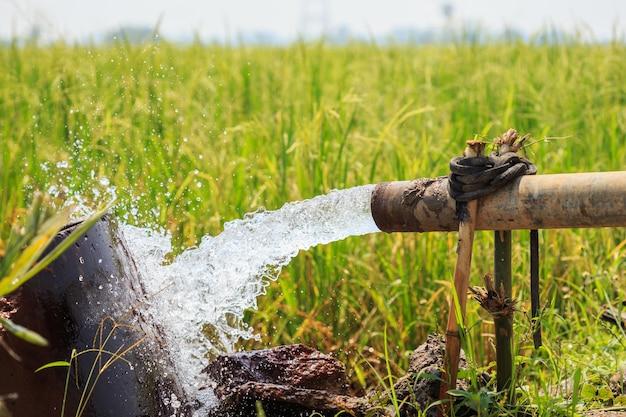 Waterstroom van grote pompbuis in padieveld in centraal van thailand, nadruk op buis Premium Foto