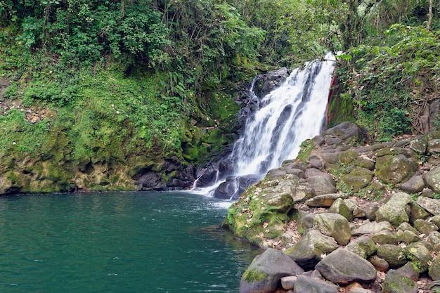 Waterval cascada de texolo in xico, mexico Gratis Foto
