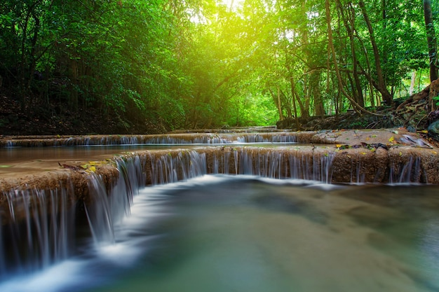 Waterval met boom in diep bos, kanchanaburi, thailand Premium Foto