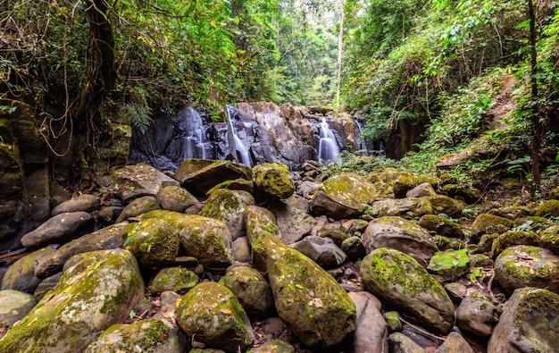 Watervallen met rotsen zijn voorgrond Premium Foto