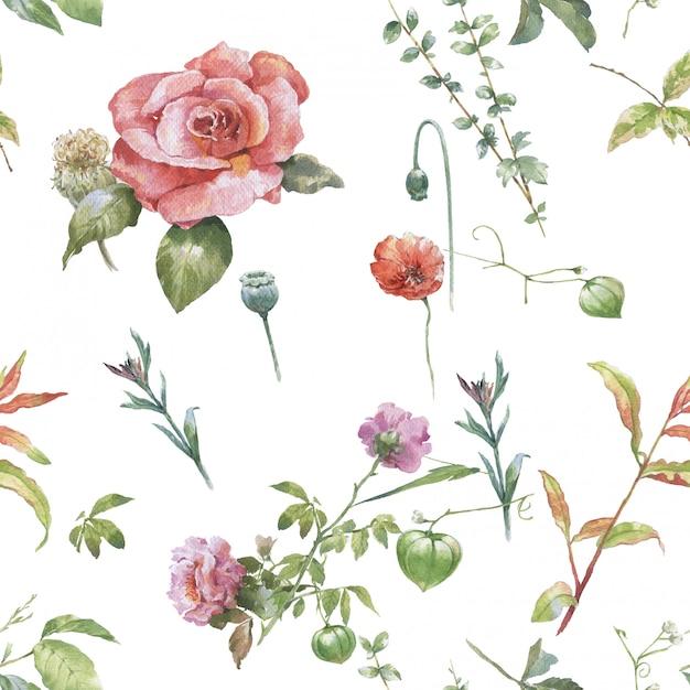 Waterverf het schilderen van blad en bloemen, naadloos patroon op witte achtergrond Premium Foto
