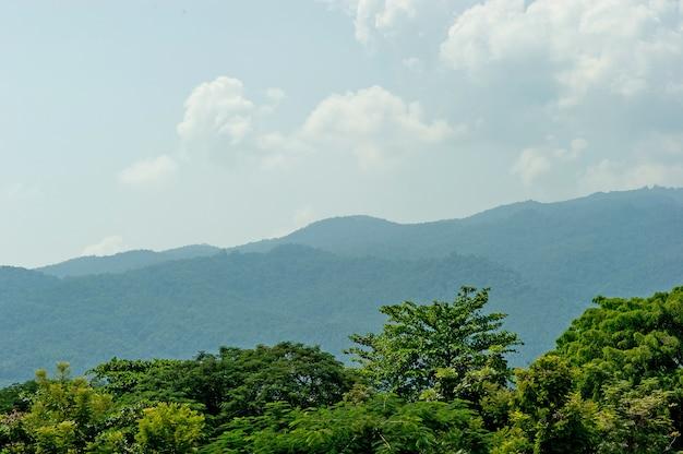 Weelderige groene bergen op de de wintervlaktes, concept van het bergtoerisme met exemplaarruimte. Premium Foto