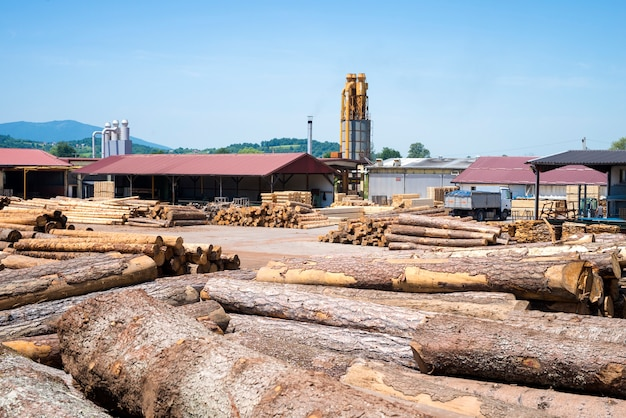 Weergave van industriële zagerij fabriek voor houtverwerking Gratis Foto