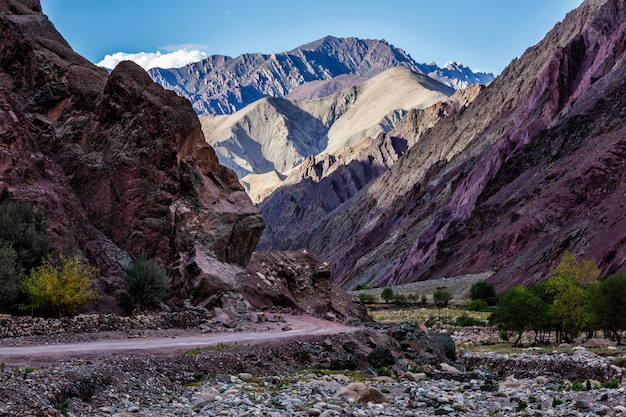 Weg in de himalaya met bergen Premium Foto