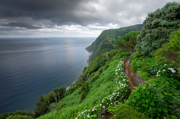 Weg omringd door bloemen aan de rand van de klif met uitzicht op de zee op bewolkte dag. sao miguel island. azoren Premium Foto