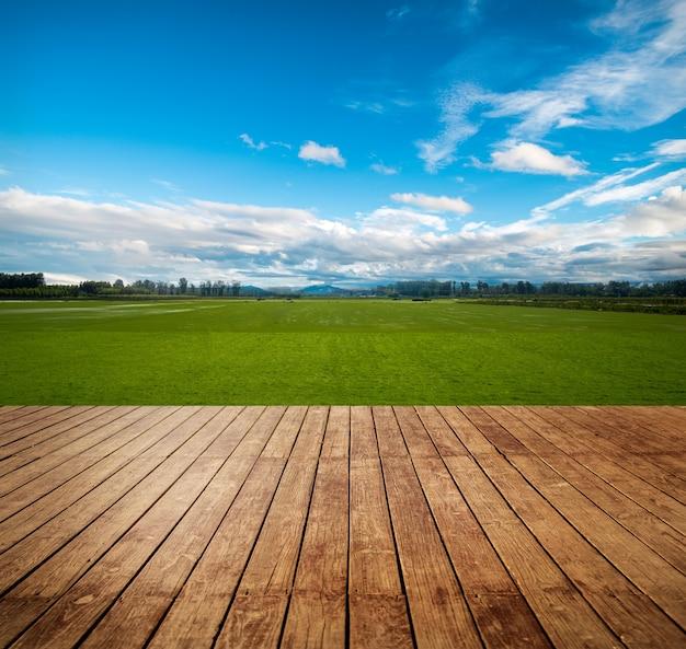 Weiland duidelijke landbouw zon grasland Gratis Foto