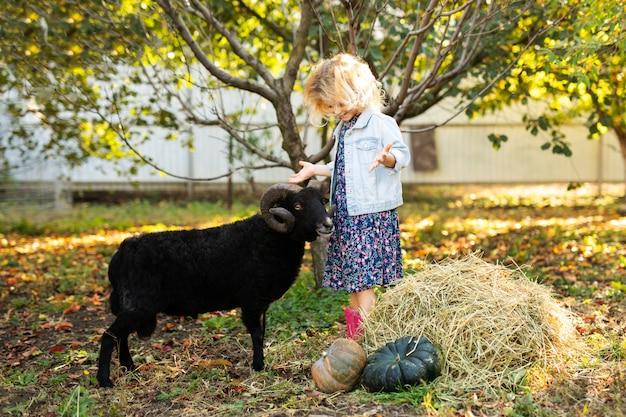 Weinig krullend blondemeisje die zwarte binnenlandse schapen voeden. het levensconcept van de boer Premium Foto