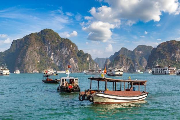 Wereld natuurlijk erfgoed halong bay, vietnam Premium Foto