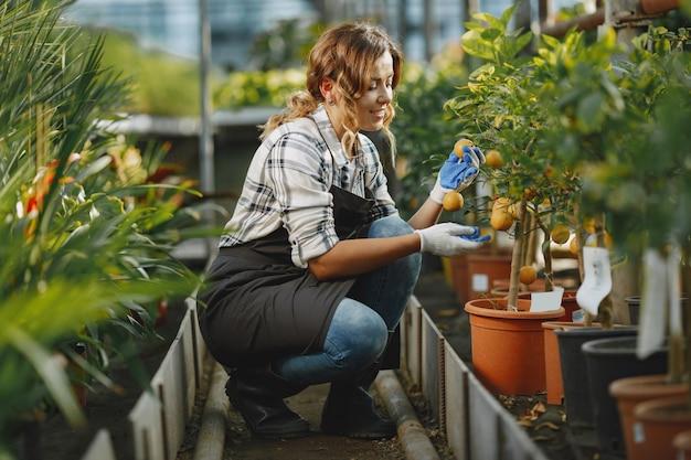 Werknemer zorgt voor bloempootjes. meisje in een wit overhemd. vrouw in handschoenen Gratis Foto
