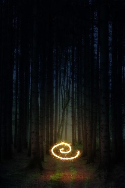 Wervel licht midden in het bos Gratis Foto