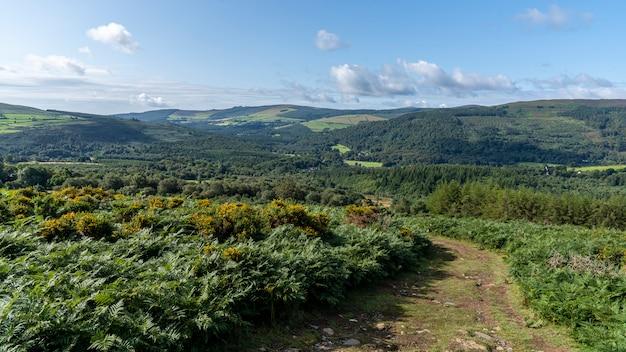 Wicklow way, county wicklow. Premium Foto