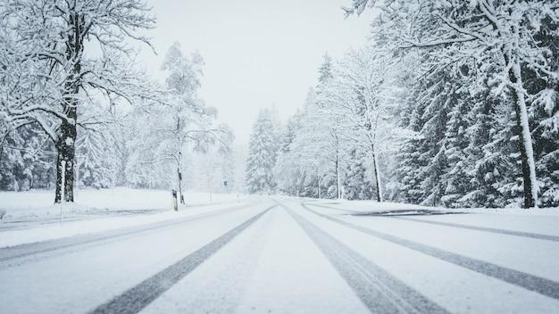 Wide shot van een weg volledig bedekt met sneeuw met pijnbomen aan beide kanten en auto sporen Gratis Foto