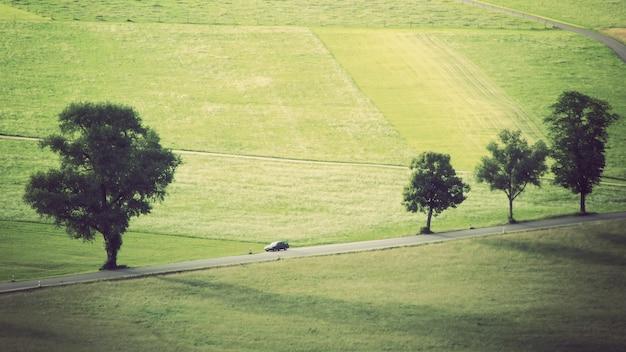 Wide shot van een weide met bomen en een auto rijden op het spoor Gratis Foto