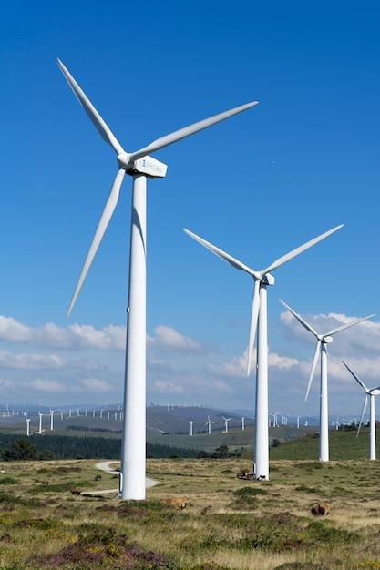Windturbines op een windmolenpark in galicië Premium Foto