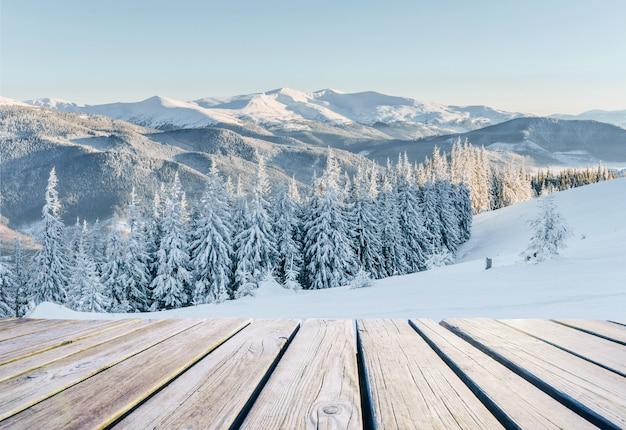 Winter landschap. in afwachting van de vakantie. dramatische winterse scène. carpathian Premium Foto