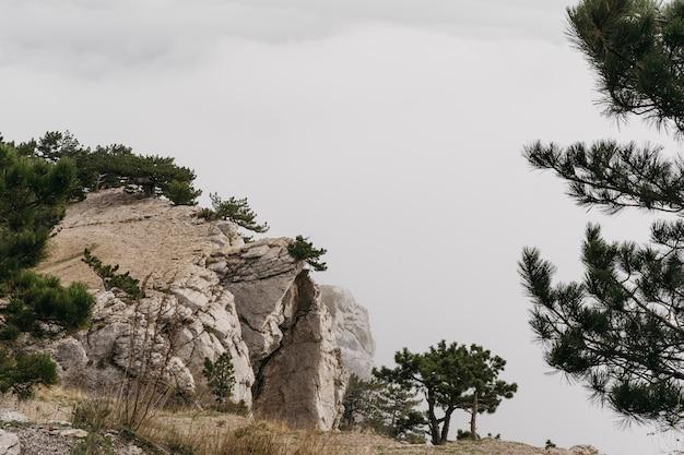 Winterlandschap met rotsen en bomen Gratis Foto