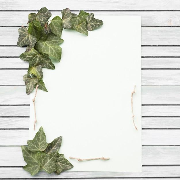 Wit en purper nam en groen blad op houten achtergrond toe Gratis Foto