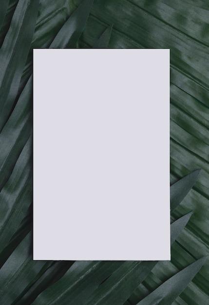 Witboek over tropische bladeren kopie ruimte Gratis Foto