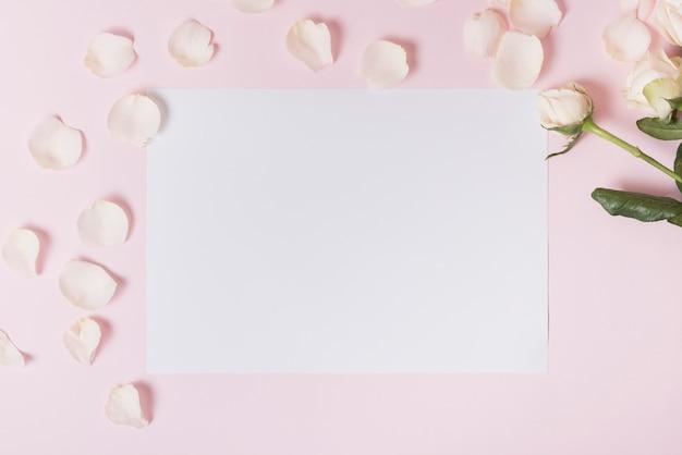 Witte bloemblaadjes van roos op blanco papier tegen roze achtergrond Gratis Foto