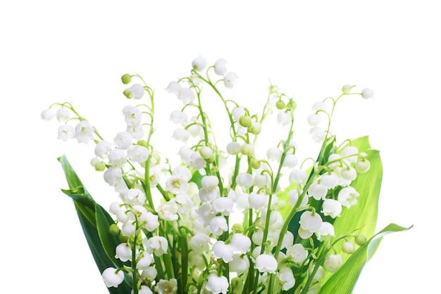 Witte bloemen lelietje-van-dalen geïsoleerd op een witte achtergrond Premium Foto