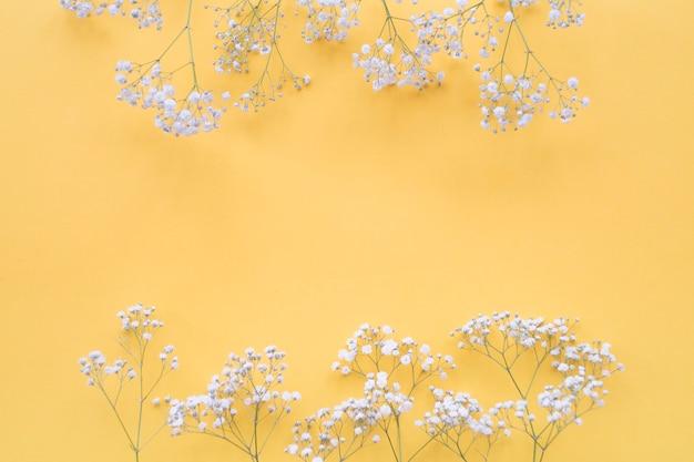 Witte bloemengrens over de gele achtergrond Gratis Foto