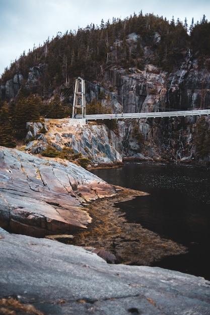 Witte brug over de rivier overdag Gratis Foto