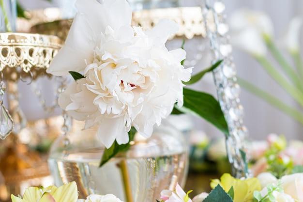 Witte dichte omhooggaand van de pioenbloem op een glaskruik. Gratis Foto