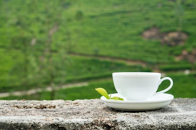 Witte die drankkop op aanplantingsachtergrond wordt geïsoleerd Premium Foto