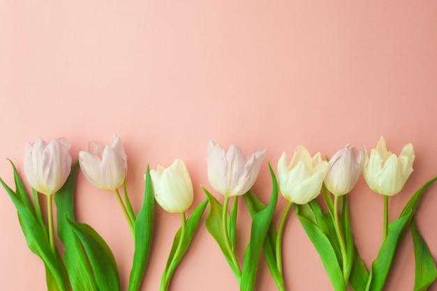 Witte en roze tulpen op een roze achtergrond. conceptie van de dag van de vrouw, lente. Premium Foto