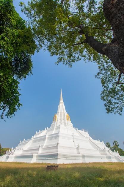 Witte pagode bij chedi phukhao thong, ayutthaya province, thailand Premium Foto
