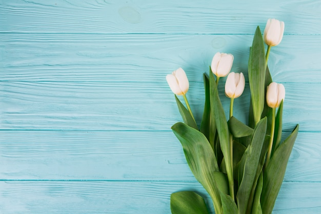 Witte tulpenbloemen op blauwe houten lijst Gratis Foto