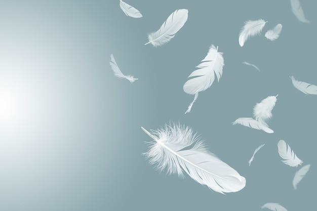 Witte veren zweven in de lucht. Premium Foto