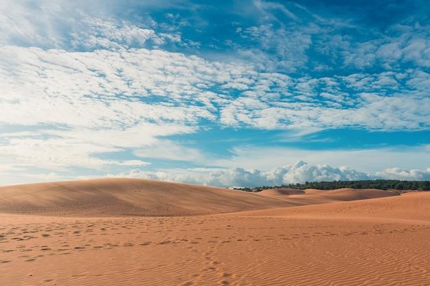 Woestijn met blauwe hemel Premium Foto