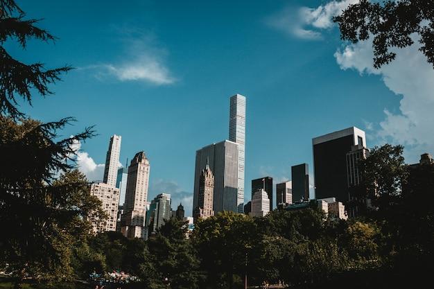 Wolkenkrabbers van new york schot uit het park Gratis Foto