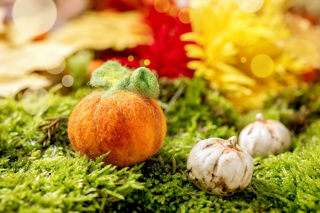 Wolnaaldvilten halloween-pompoen op mos. herfst seizoensgebonden halloween-groet Premium Foto