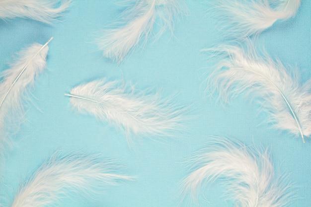 Zacht zacht wit verenpatroon over pastelkleurachtergrond Premium Foto