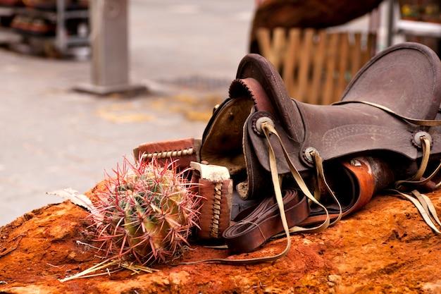 Zadel en cactus Premium Foto