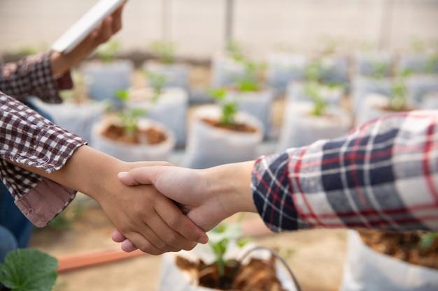 Zakelijke overeenkomst handen schudden in een meloen plantage Gratis Foto