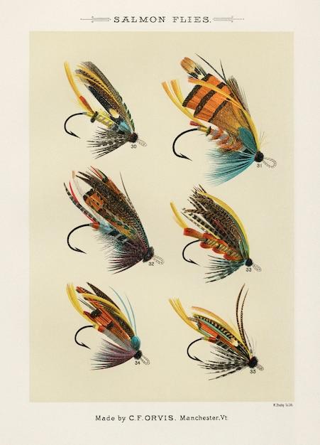 Zalm vliegt van favoriete vliegen en hun geschiedenis door mary orvis marbury. Gratis Foto