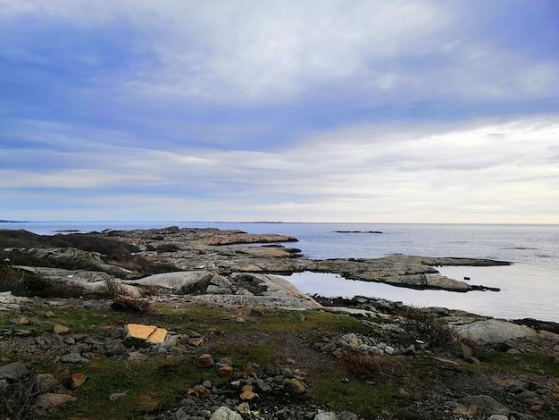 Zee omgeven door rotsen bedekt met takken onder een bewolkte hemel Gratis Foto
