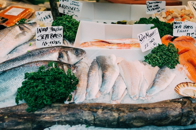 Zeebaars voor verkoop bij vissenmarkt Gratis Foto