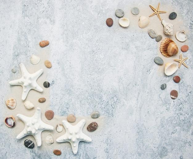 Zeeschelpen en zeesterrengrens Premium Foto