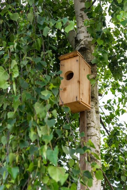 Zelfgemaakt vogelhuisje voor vogels op een berk. Premium Foto