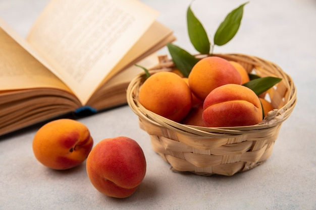 Zijaanzicht van abrikozen in mand en open boek op witte achtergrond Gratis Foto