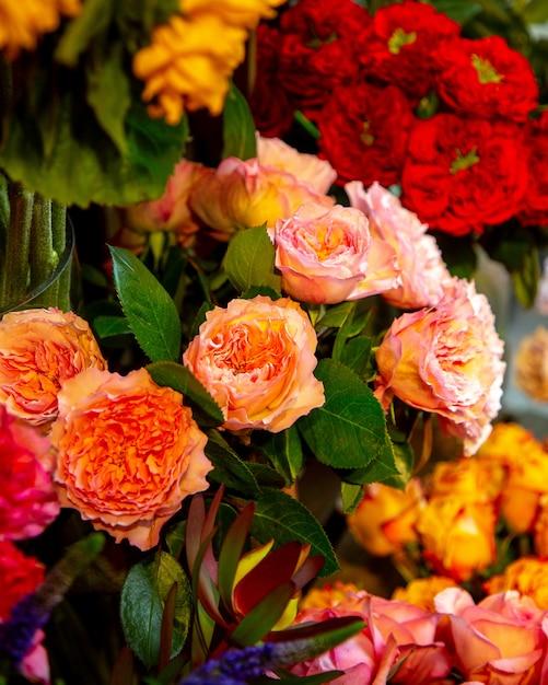 Zijaanzicht van de engelse rozen van de abrikozenkleur door david austin Gratis Foto