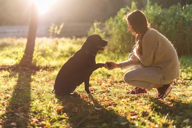Zijaanzicht van hond en vrouwenhand het schudden in park Gratis Foto