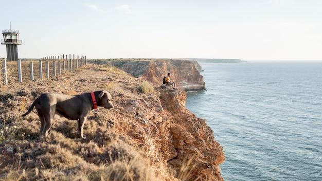 Zijaanzichthond die een wandeling maakt naast zijn eigenaar aan een kust met exemplaarruimte Gratis Foto
